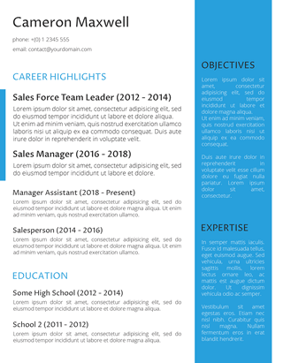 The Strategist Resume