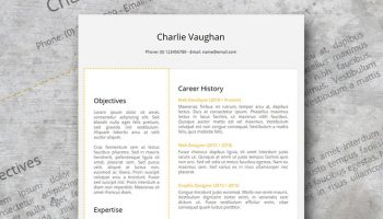 Golder resume design Google docs