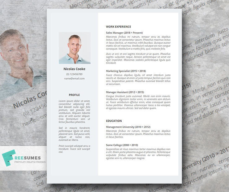 Limita Light Professional Resume Template For Google Docs Freesumes