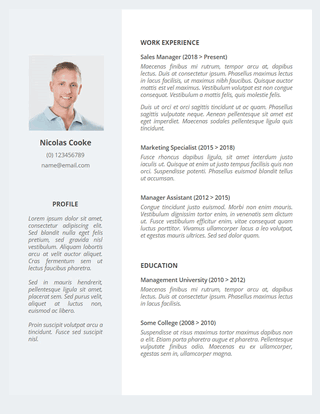 Litima Resume Template Google Docs