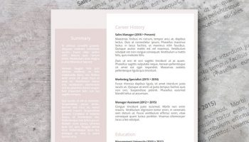 Roseada Google docs resume template