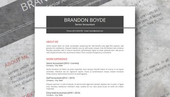 Strail resume template for Google docs