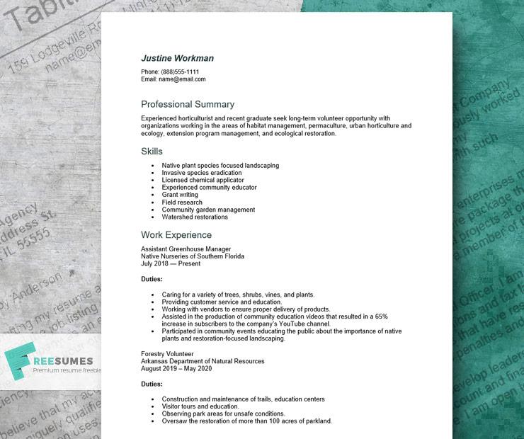 volunteer resume example